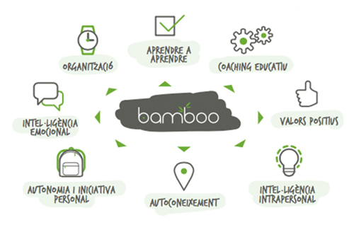 diagrama-bamboo-cat-web