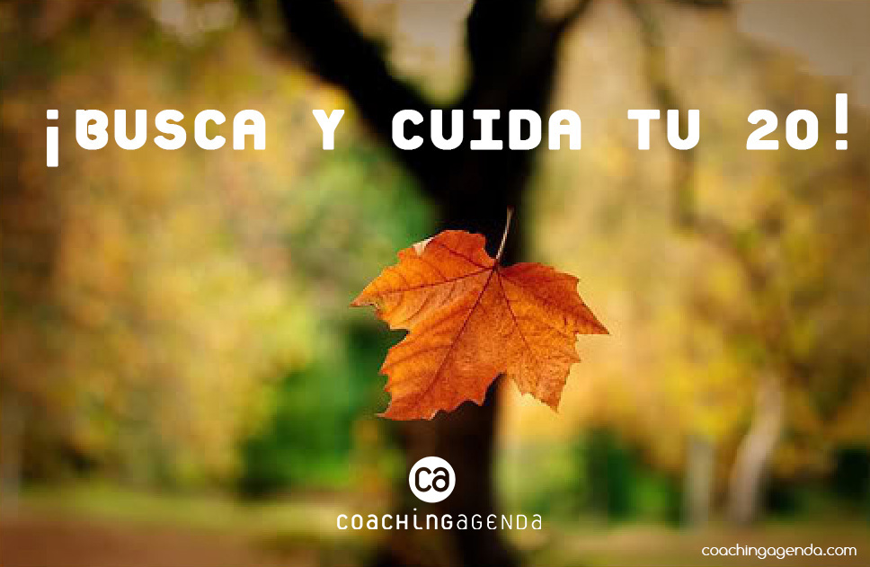 coachingagenda