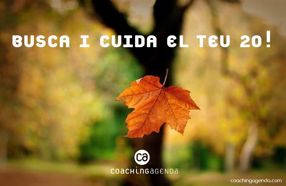 coachingagenda